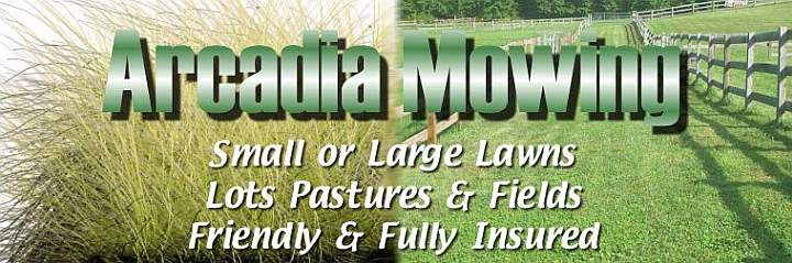 Lawn, lot, pasture and field mowing in Wayne County, NY
